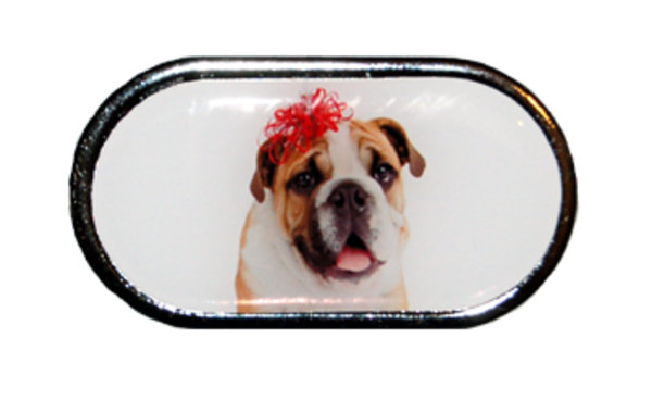 Púzdro so zrkadielkom Vianočný motív - Pes s mašľou