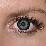 Gorgeous grey v detailu na původní barvě očí modré