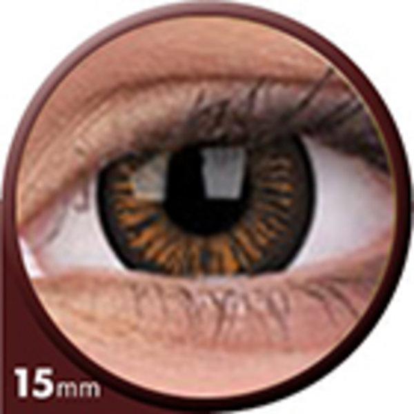 Phantasee Big Eyes - Charming Brown (2 šošovky trojmesačné) - nedioptrické